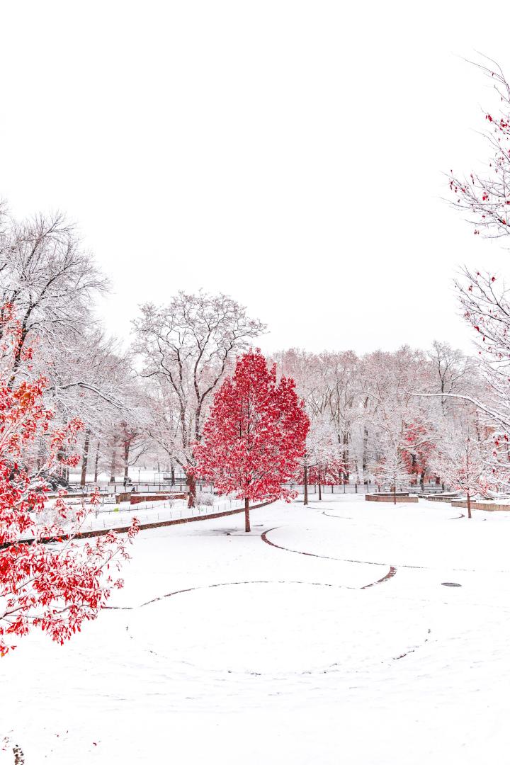 stunning photo of nyc