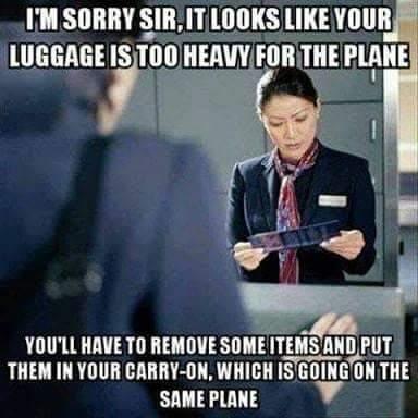 Flying Memes