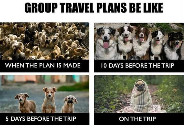 Group Travel Memes
